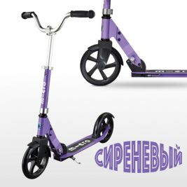 Micro Cruiser Purple